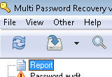 Multi Password Recovery